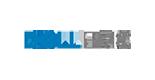 Dell_EMC_155x80_barva